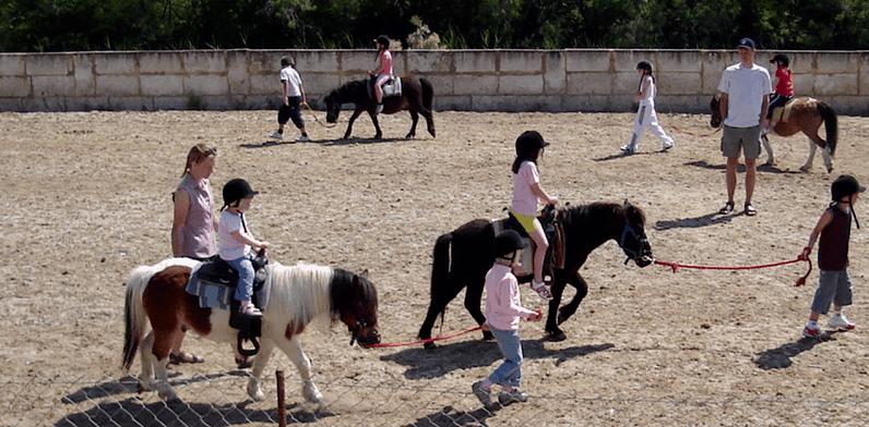 Ponys auf der Ranch
