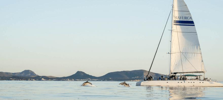 Katamaranausflug auf Mallorca