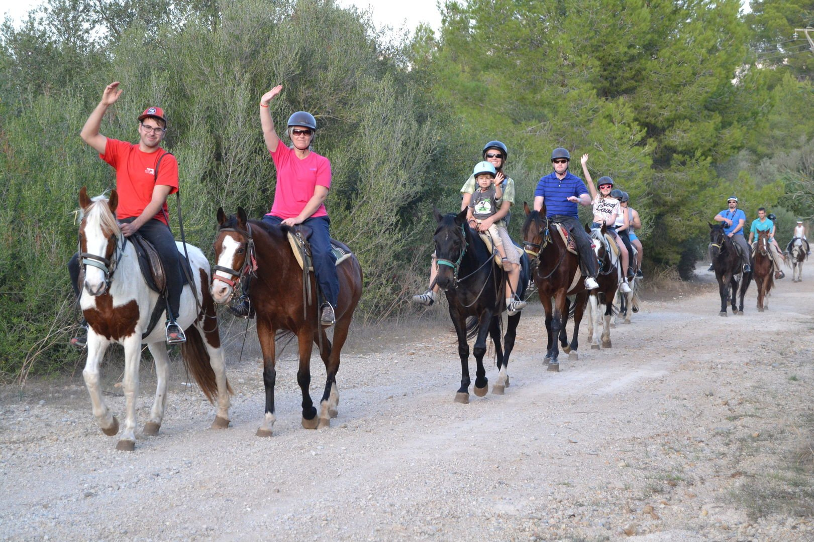 horse group in alcudia mountains